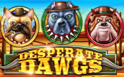 Desperate Dawgs Online Slot