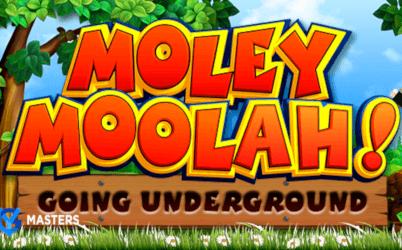 Moley Moolah Online Slot