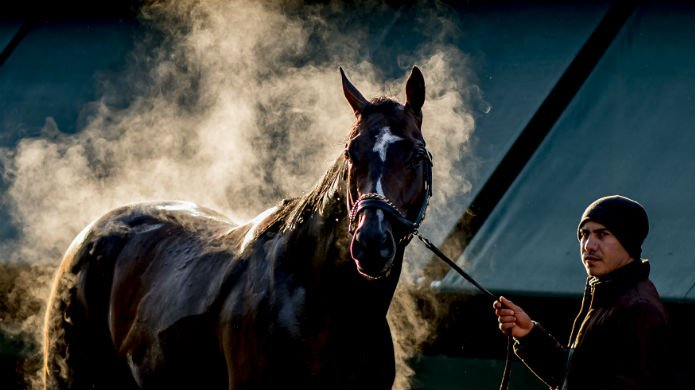 Preakness Stakes Betting Tips, Odds & Horses You Should Back