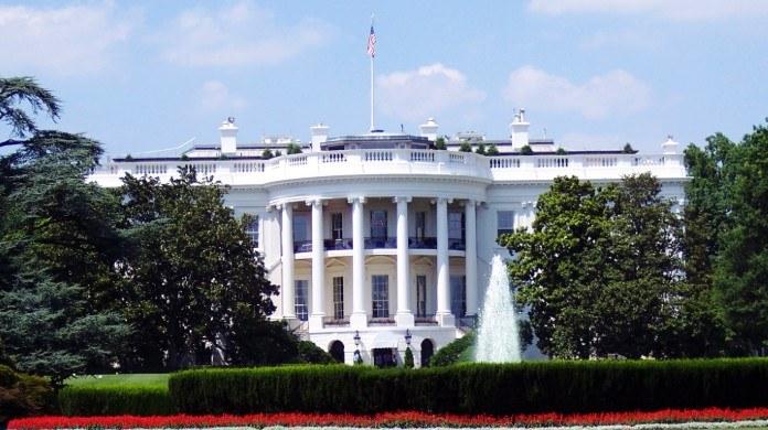 US Presidential Election Odds 2020 Weekly Rundown: Bloomberg Effect