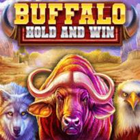 Buffalo Hold and Win Logo