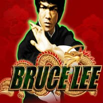 Bruce Lee: Fire of the Dragon  Logo