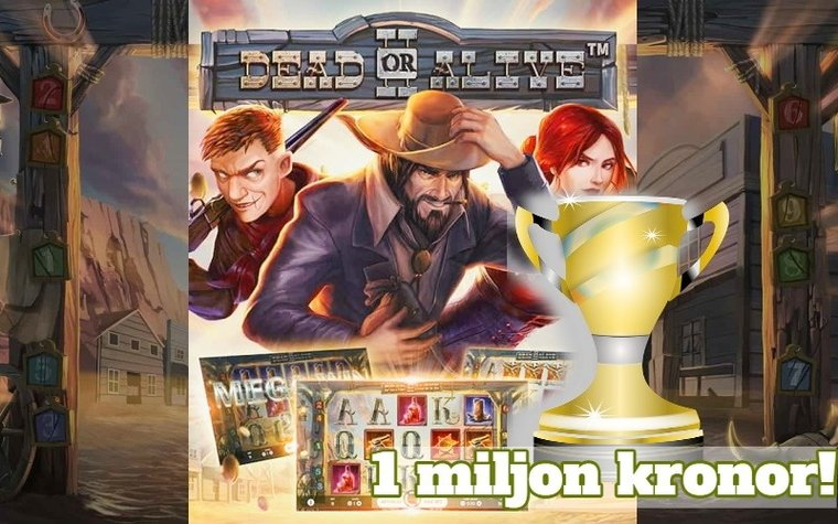 Svensk vann 1 miljon på Dead or Alive 2
