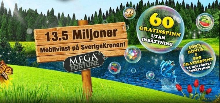 Storvinst på svenskt casino!