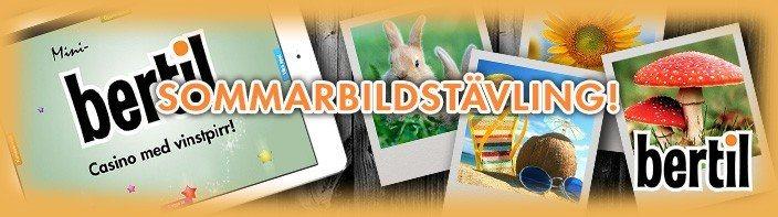 Vinn en iPad mini med Bertil i sommar